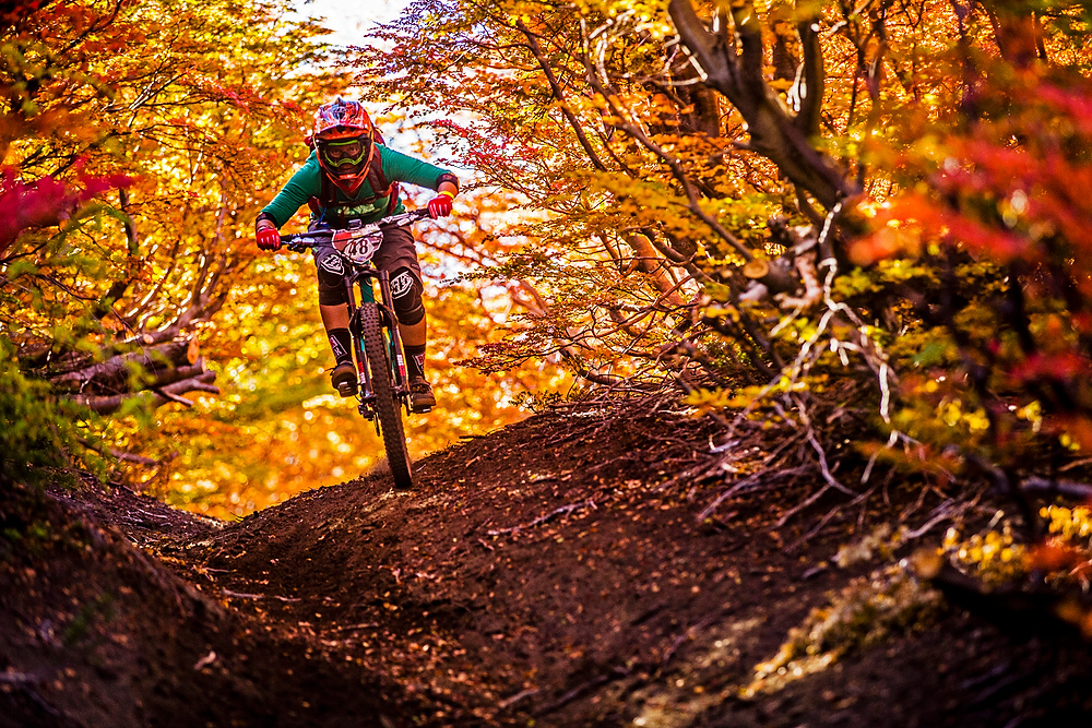 6ef6266a501 No words needed for this tunnel of Fall colours - Sven Martin