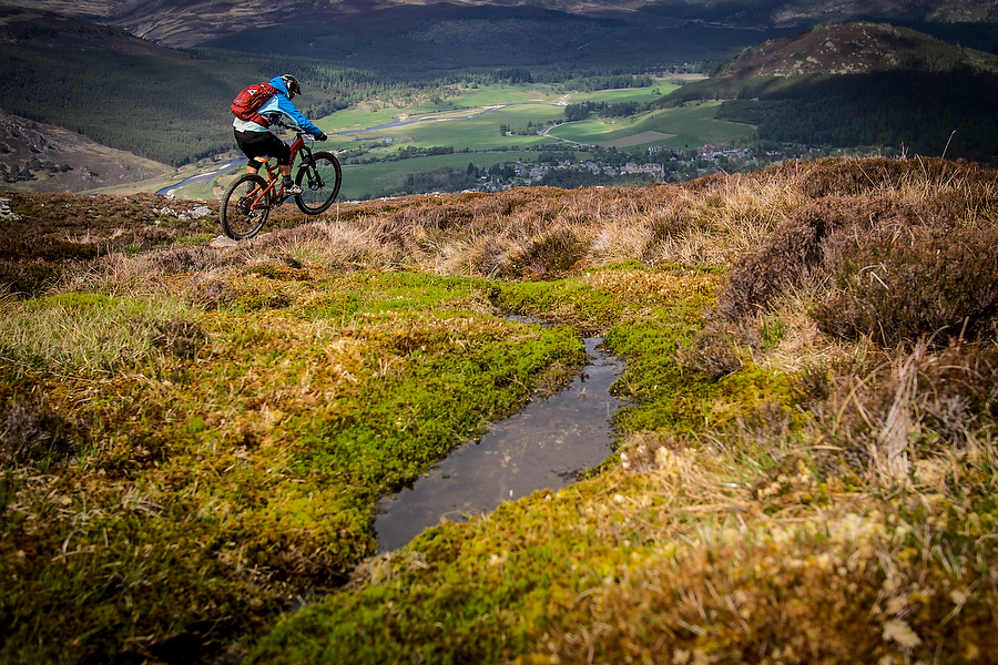 views & bogs