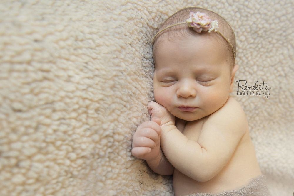 Biagi_newborn15_logo.jpg