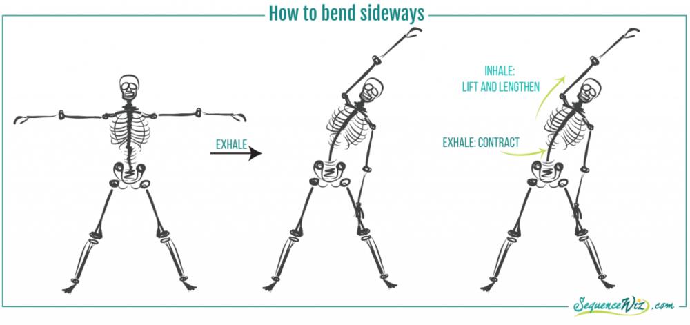 Yoga Side Bending.png