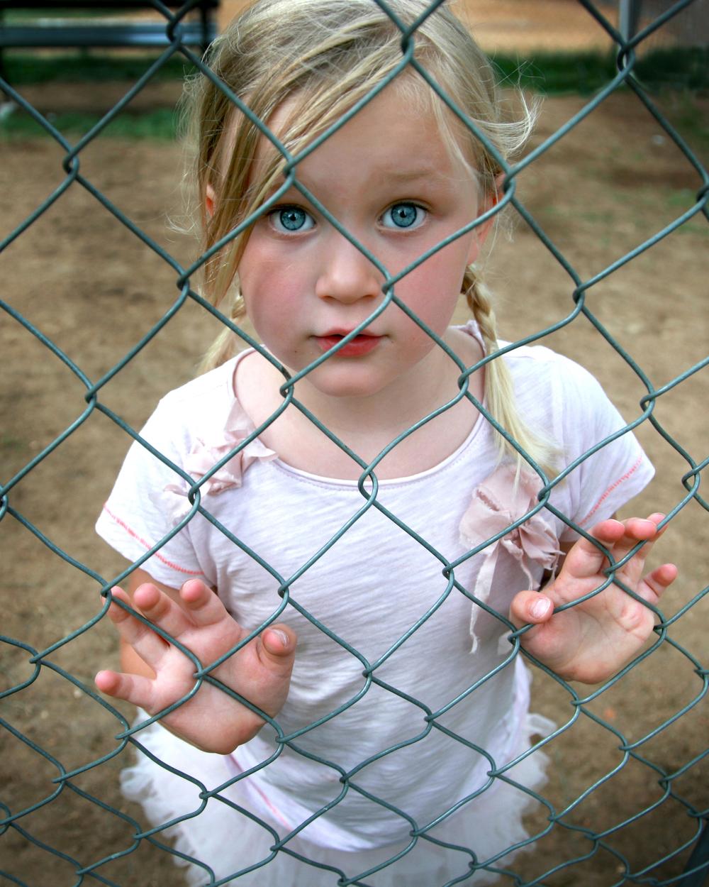 fence_rthompson.jpg