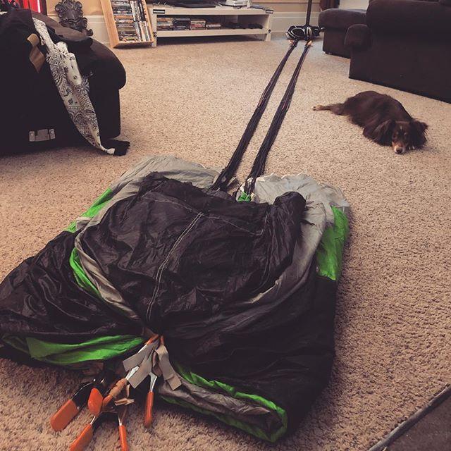 Always nice having the dog around supervising while I pack up the BASE rig #australianshepherd #aussiesofinstagram #dogsofinstagram #puppylove #basejumping #asylumdesigns