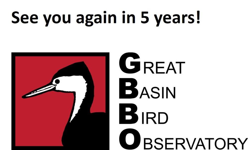GBBO.jpg