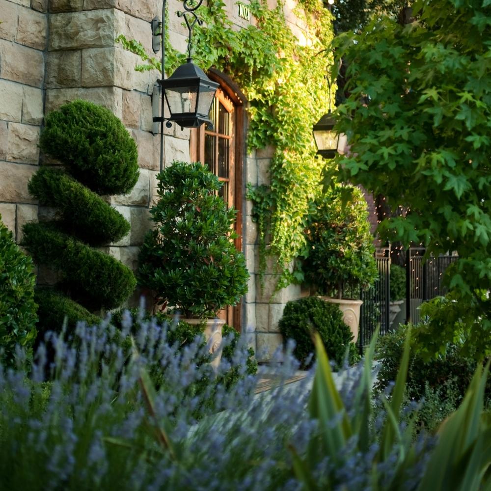 Exterior w Lavender - Square LoRes.jpg