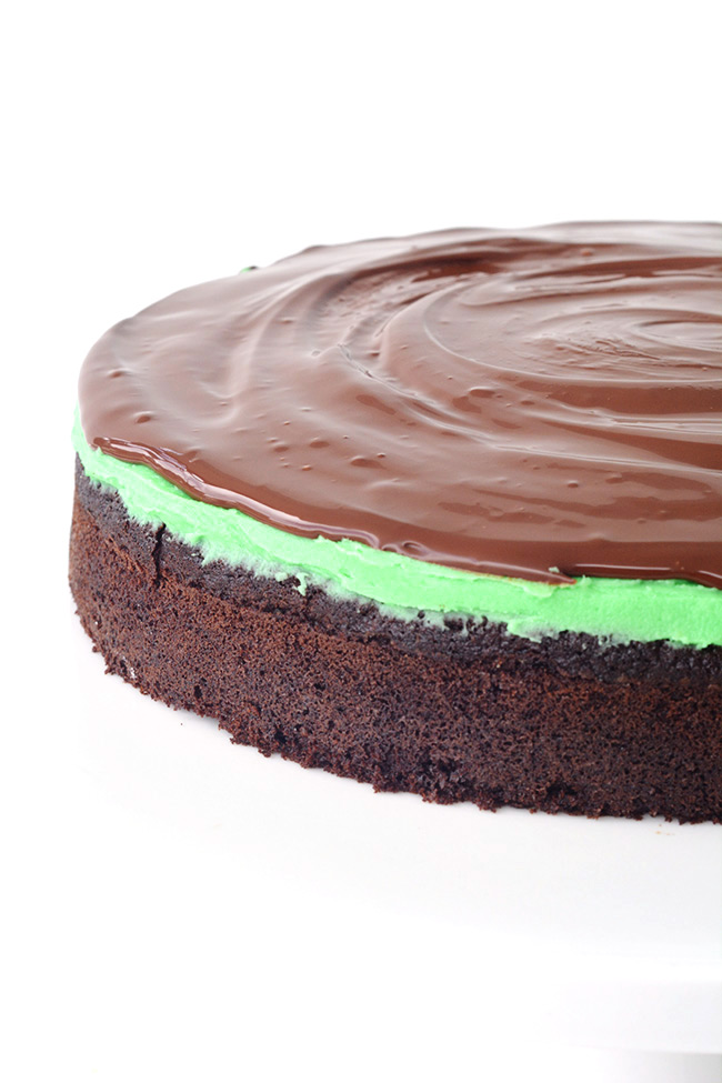 The BEST Mint Chocolate Cake with a creamy mint frosting