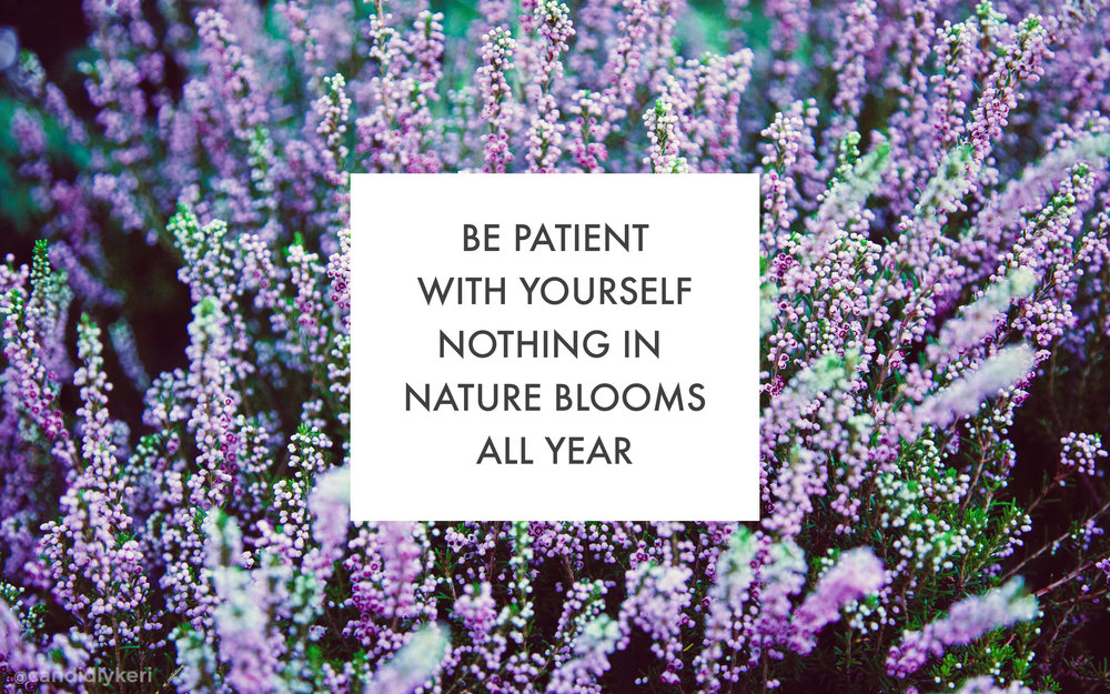 be patient with yourself nothing in nature blooms all year desktop