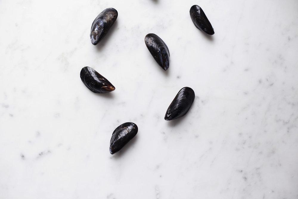 mussle pasta iv.jpg