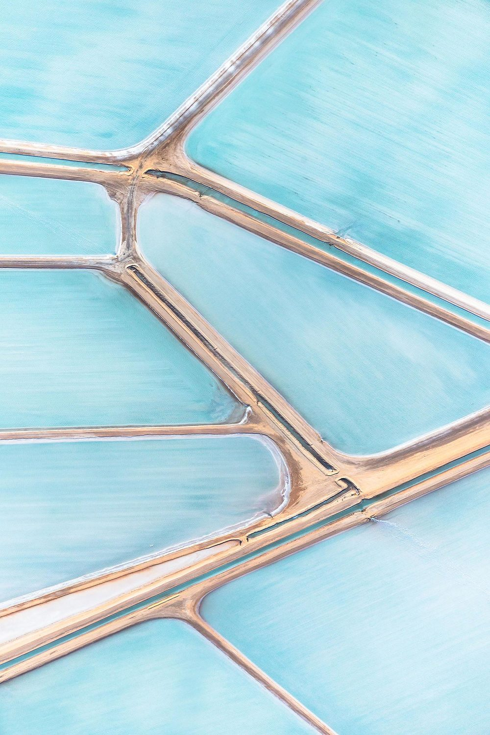 steve-backs-blue-salt-fields-coast-by-coast-1