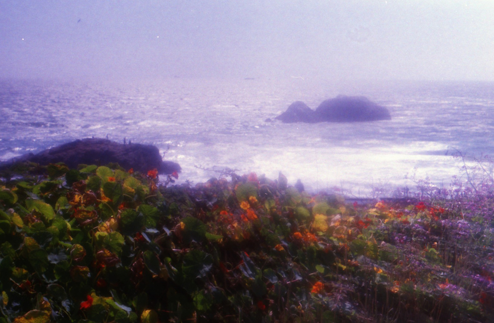 california-27.jpg