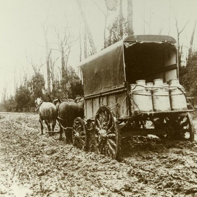 milkhorsecart