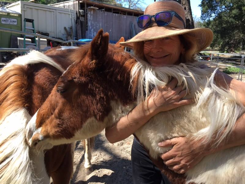 "Me with one of our new rescues. We recently adopted four babies from the Valley View Ranch Equine Rescue. They were slaughter bound and purchased at auction. Narrowly escaping being part of the horse meat industry. They are now part of ""The Baby Project"", a program designed to teach future horse owners how to care and build relationships with horses from the ground up. Your donations will go to care for these horses as they develop and grow along with our students."