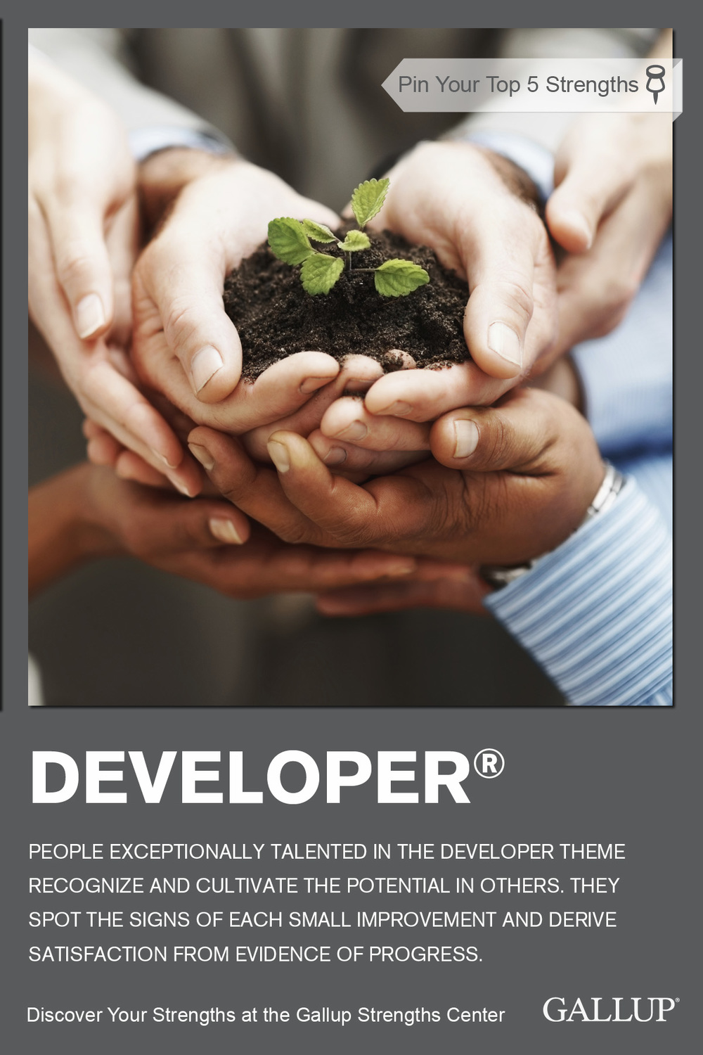 Developer Strengths School StrengthsFinder Singapore.jpg