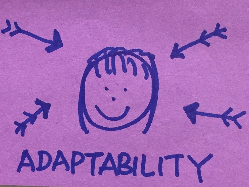Adaptability Strengthsfinder Taking Pressure
