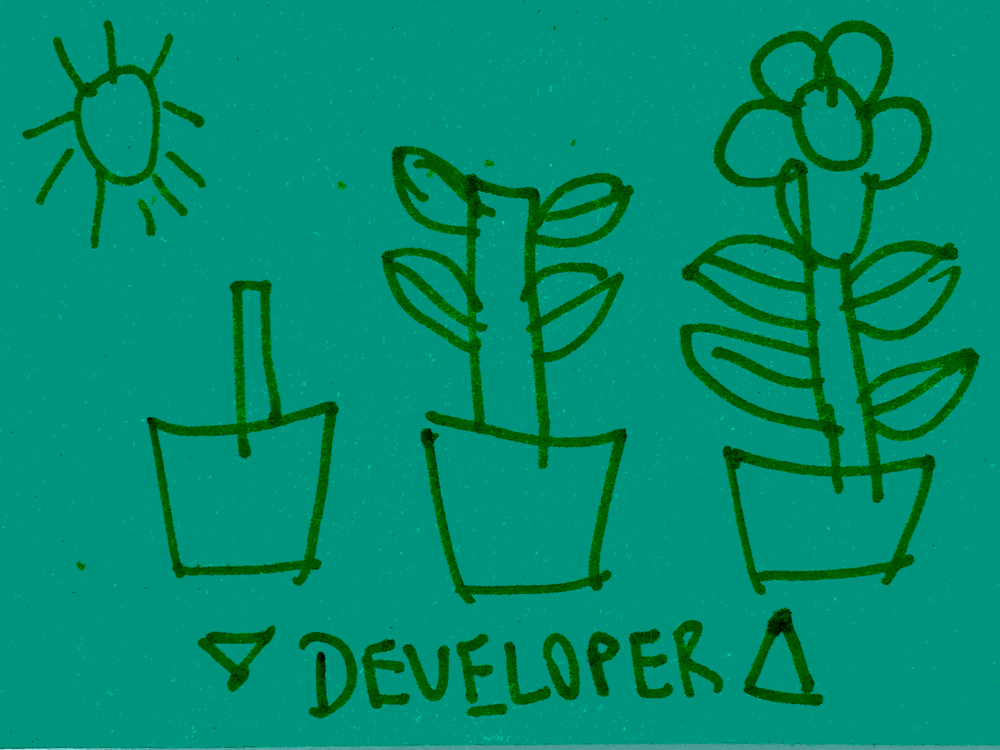 Developer Strengthsfinder Flower Pots