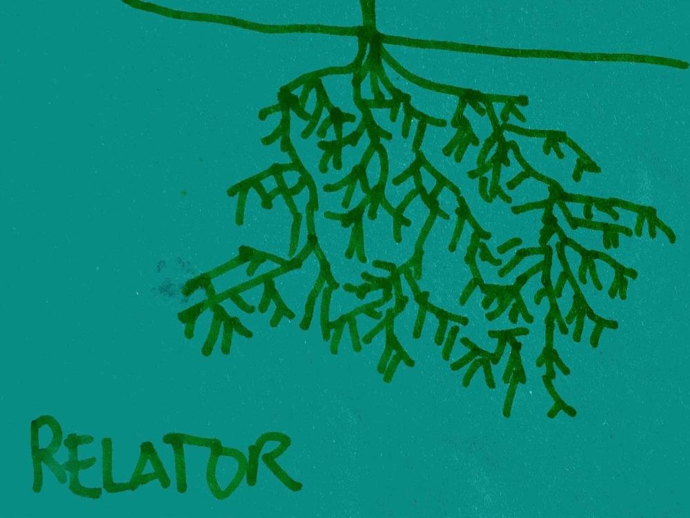 Relator Strengthsfinder Going Deep Relationships