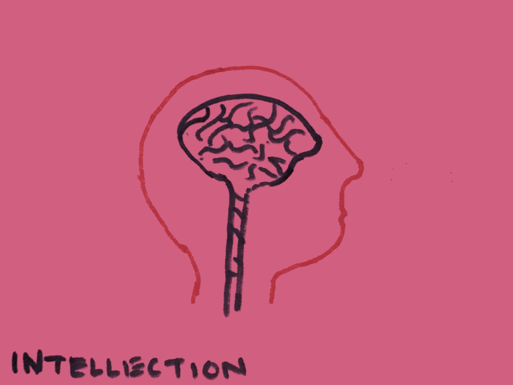 Intellection Strengthsfinder Thinkning Brain