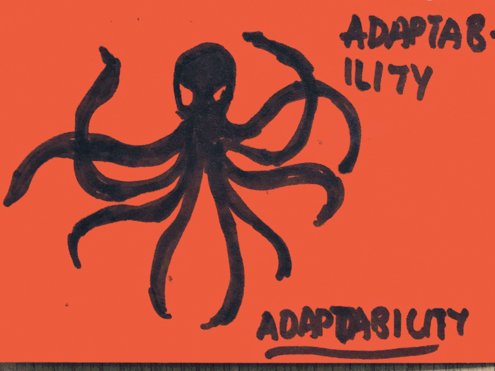 Adaptability Strengthsfinder Octopus React