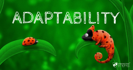 Adaptability Strengthsfinder Singapore Strengths School