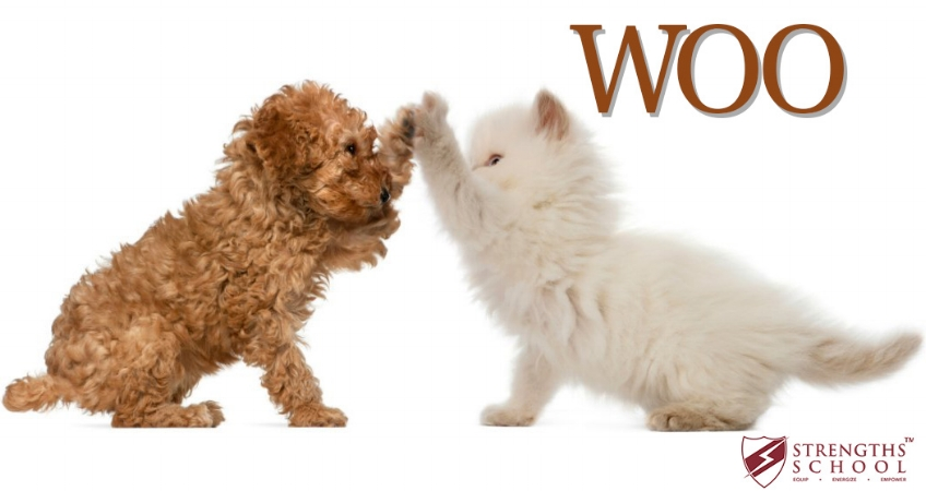 WOO dog cat high five (700 x 400).jpg