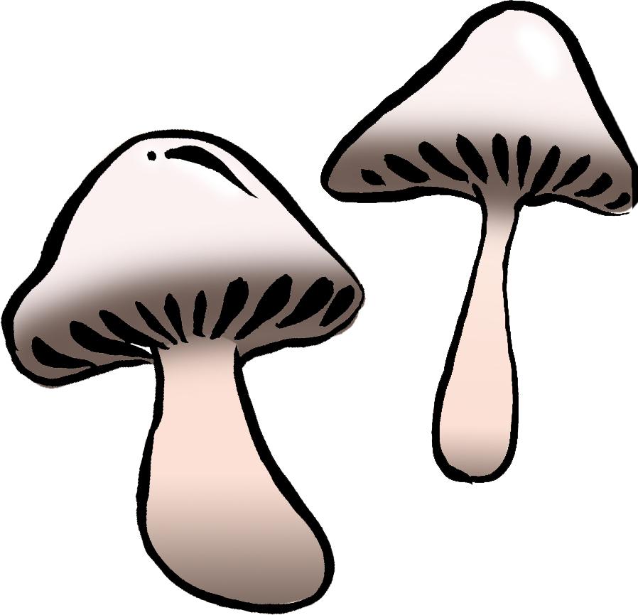 flora_shrooms.jpg