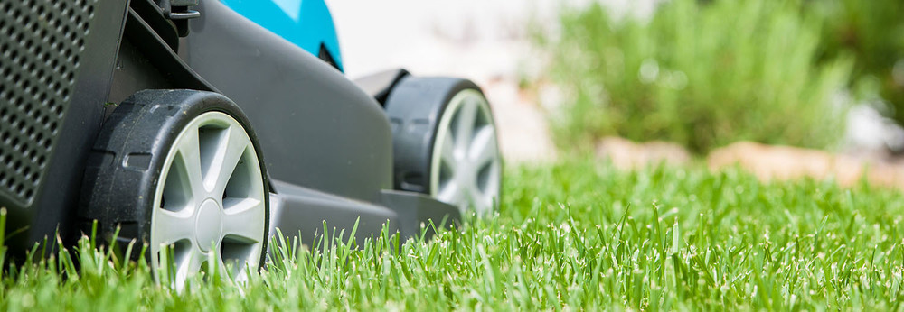 Affordable Lawn Mowing and Yard Maintenance Services Brisbane Wide