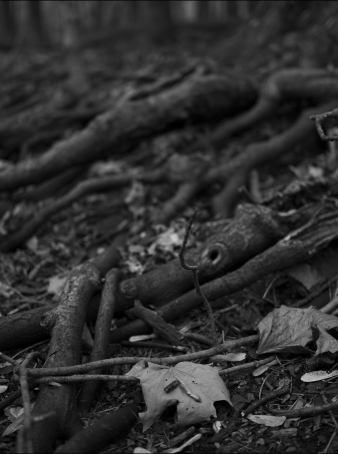 Phylactere-photography-BW5.png