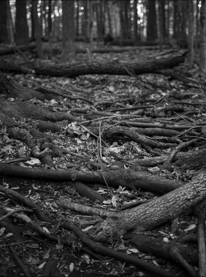 Phylactere-photography-BW6.png