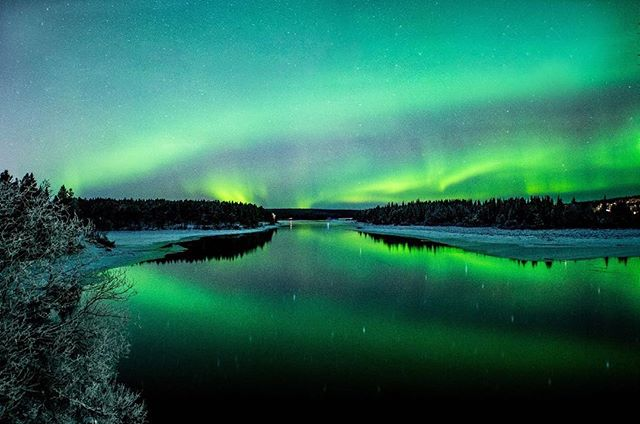 I have been longing to those freezing nights with those amazing green skies. Lapland , good to be here again. #icehotel#visitsweden #swedishinstitute#lapland#kiruna#northernlights#auroraborealis #jukkasjärvi#sweden#seesweden