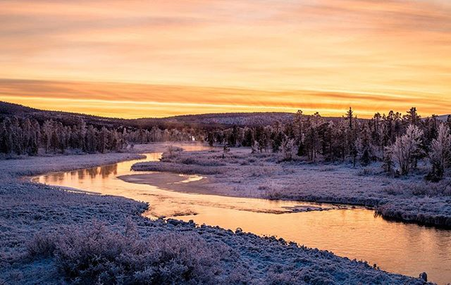 When the rivers are not frozen yet it's the best time to be there around sunset 🌅 #icehotelsweden #jukkasjärvi #kiruna #seesweden # @seesweden #swedishinstitute #visitsweden #visitsweden_us @visitsweden #river#sunset