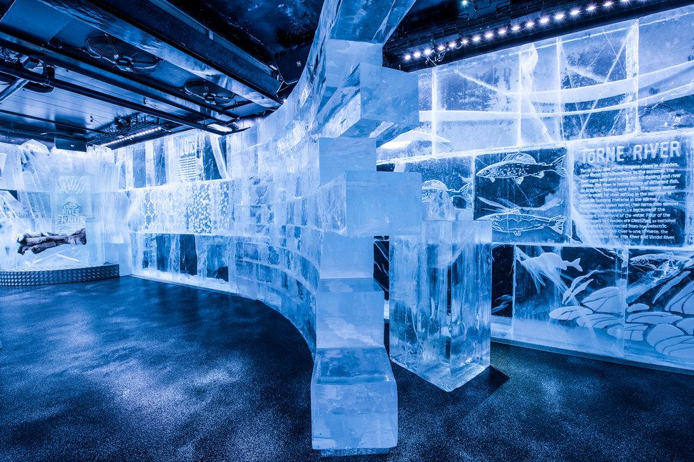 ICEBAR 2017 - Kalle Ekeroth, John Pettersson, Tjåsa Lucia Gusfors, Jon Nilsson, Mats Nilsson ,Mattias Eriksson. - by Asaf Kliger (1 of 16).jpg