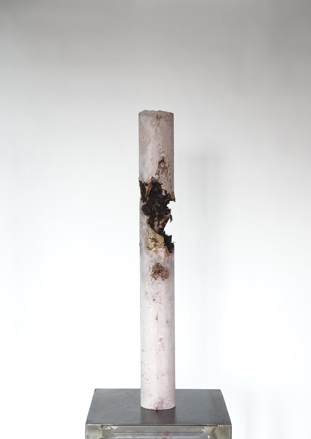 Still Life #2 Carnation-Michele Tiberio.JPG
