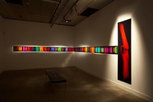 Index, Penelope Davis, 2008, type c prints, 33 images @ 37x29cm & 1 image @ 240x62cm