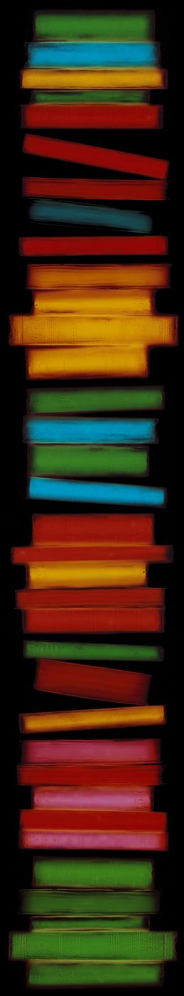 Spine, Penelope Davis, 2005, type c print, 169x34cm