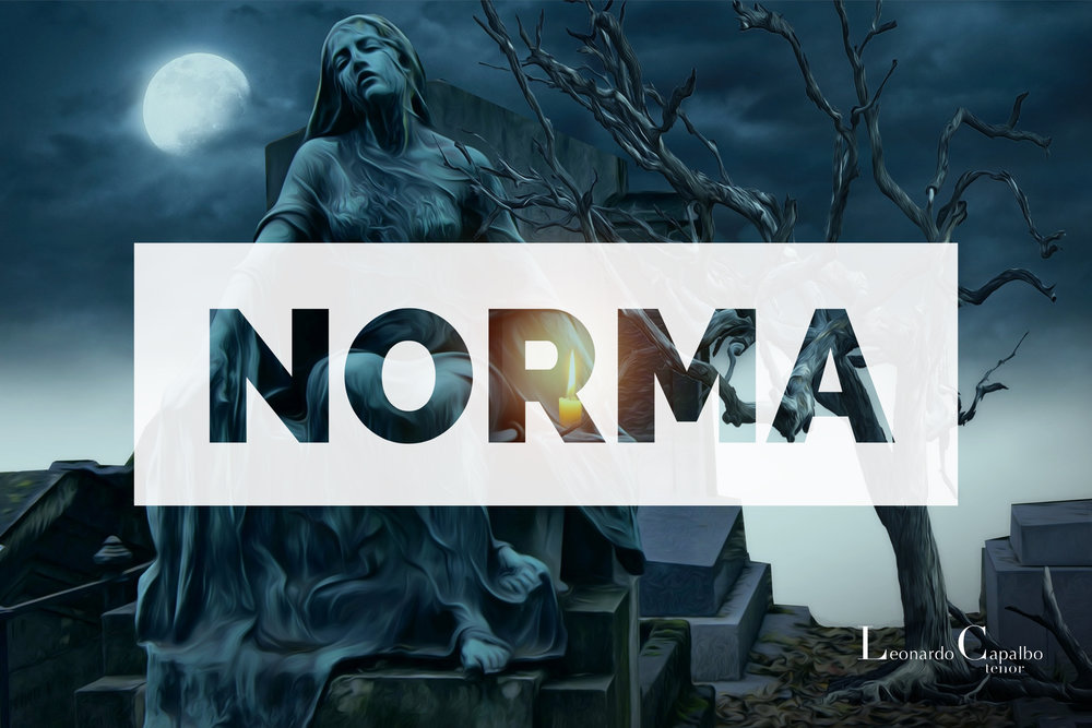 Norma Placard.jpg
