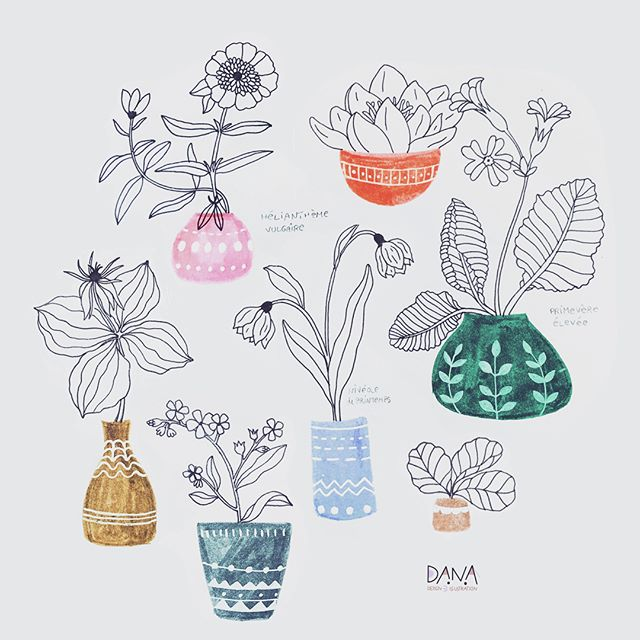 Dreaming of wild flowers in their pots 😊 Have a beautiful day! . . #wildplants #sketchbookpage #floraldesigns #fortheloveofcolors #happymom #tombow #colorpencils #makeartthatsells #danadesignillustration