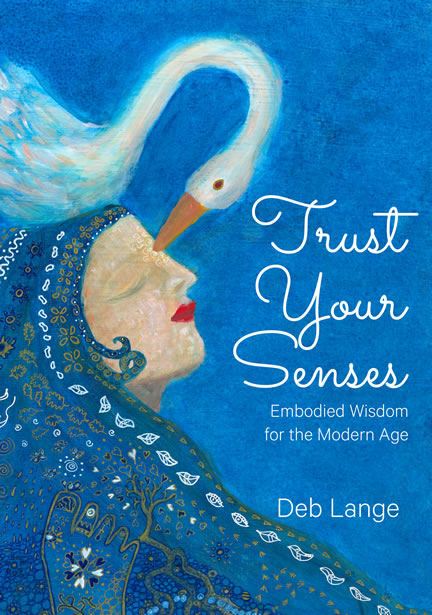 trust your senses book cover