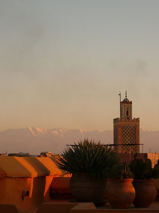 Marrakech_Maroc_Marocco_Atelier_Jardins_Christian_Préaud_01