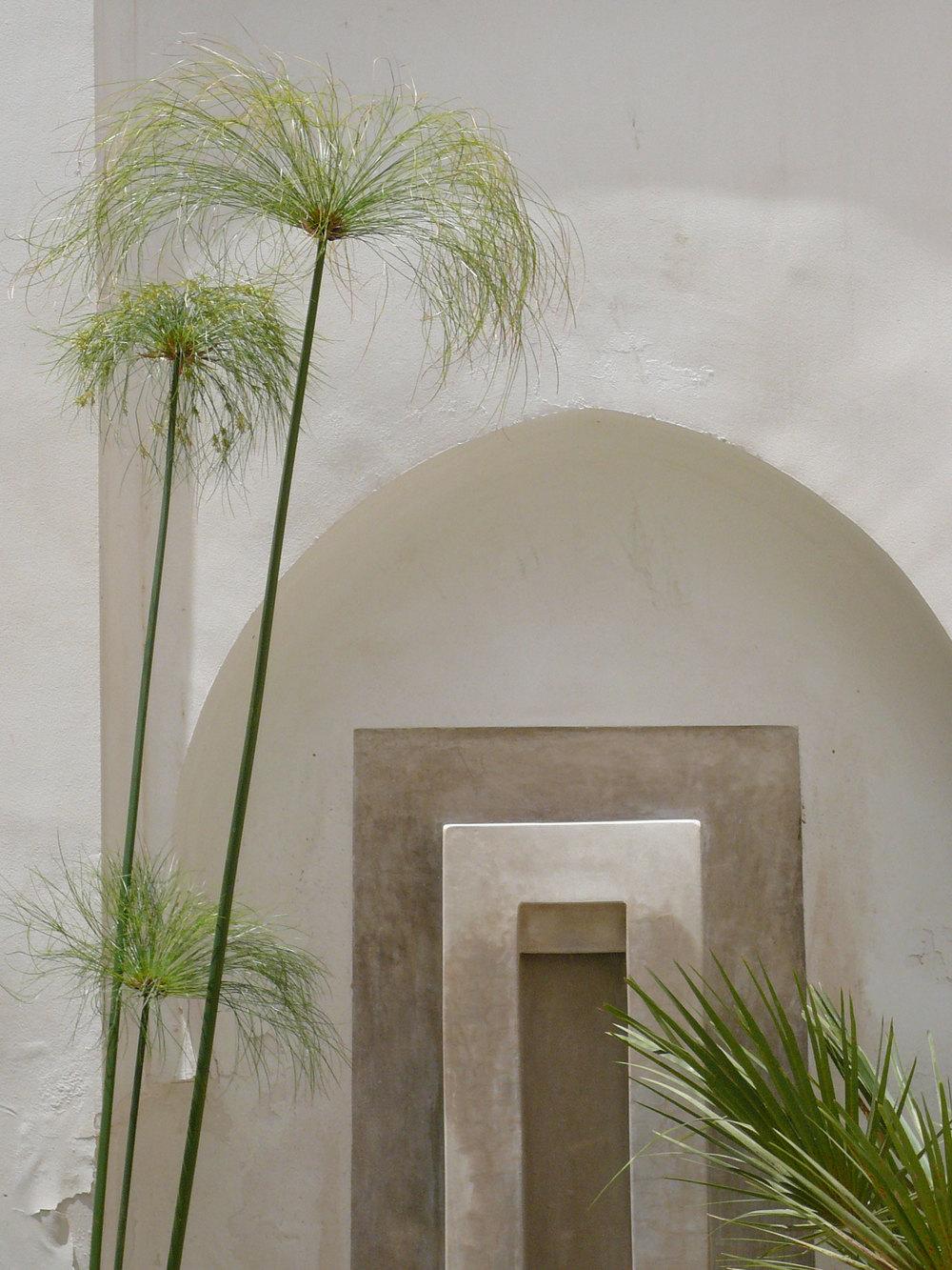 Marrakech_Maroc_Marocco_Atelier_Jardins_Christian_Préaud_05