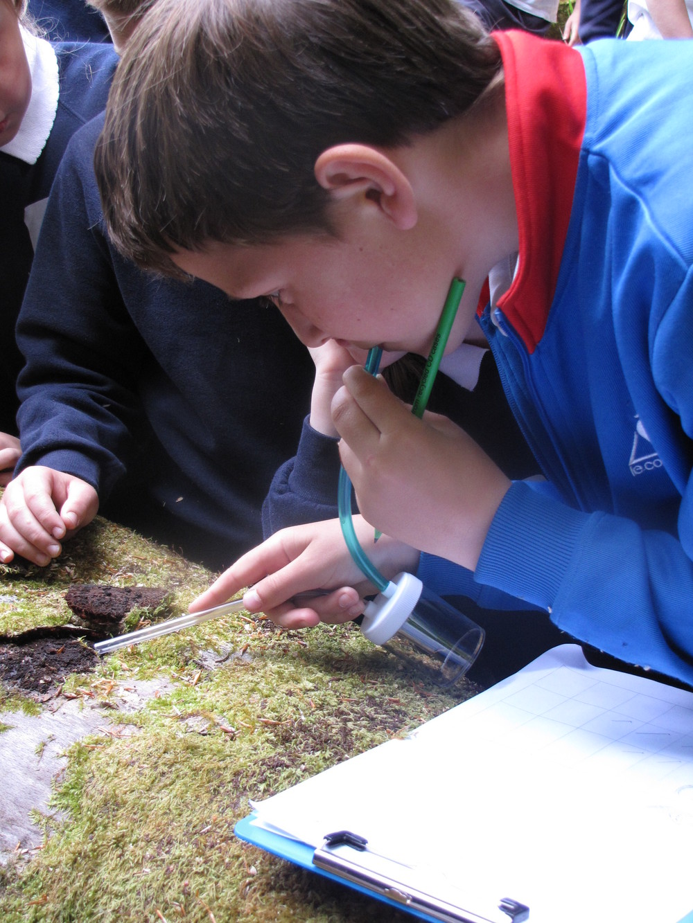 Eco-Schools Ireland