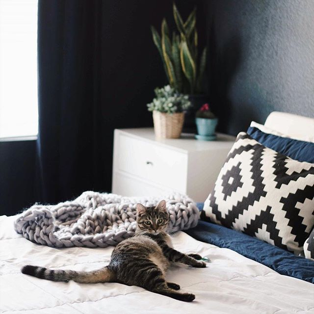 Raise your hand if you need an afternoon nap, too. 😴🙋🏻‍♀️😅 ••• #bohodecor #bohohome #chunkyknitblanket #chunkyknits #knittersofinstagram #bigknits #ourmakerlife #styleithappy #styleitdark #rescuedismyfavoritebreed