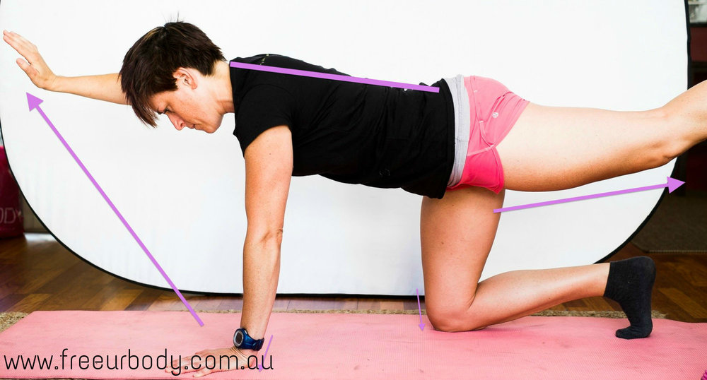 Bird Dog Exercise Gold Coast Mobile Personal Trainer.jpg
