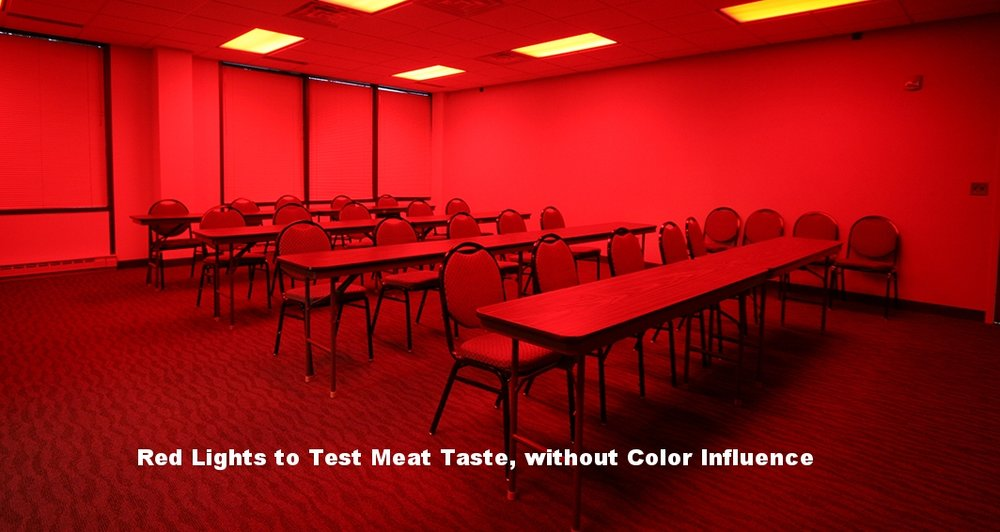 Red Light Taste Test-W.jpg