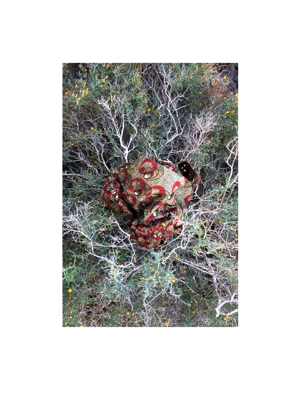 L.Pizzani The nest (2015). 20x30 cm on 40x60 cm paper. Pigment ink print on cotton paper. Edition of 20. £ 120