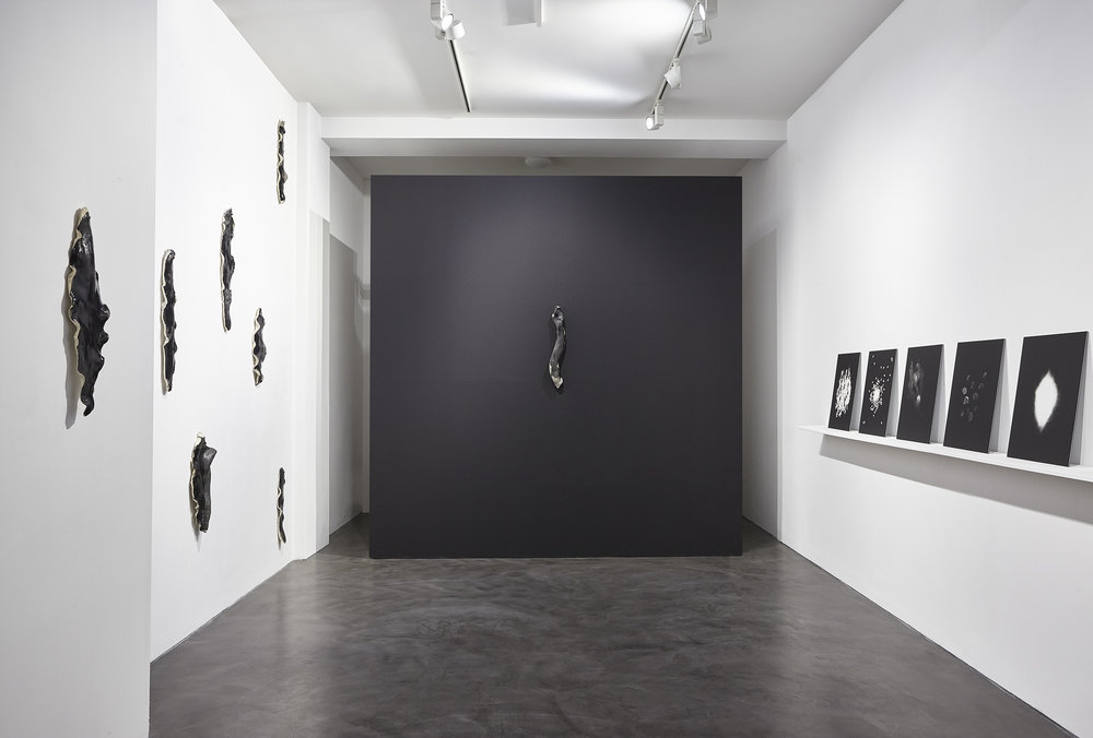 Installation view. Photo: Joseph Devitt
