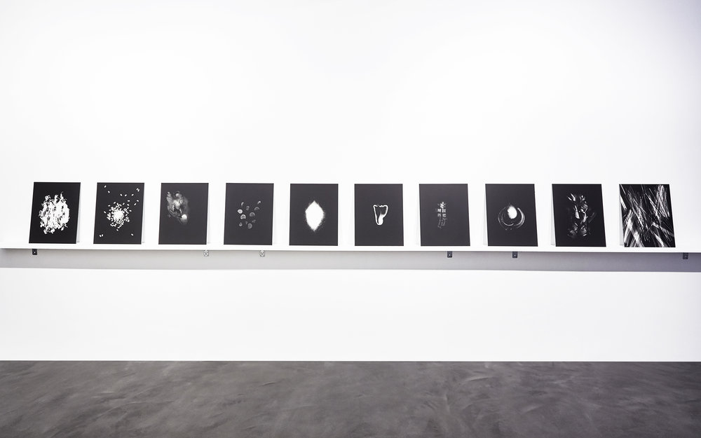 LPizzani-Photograms install shot.jpg