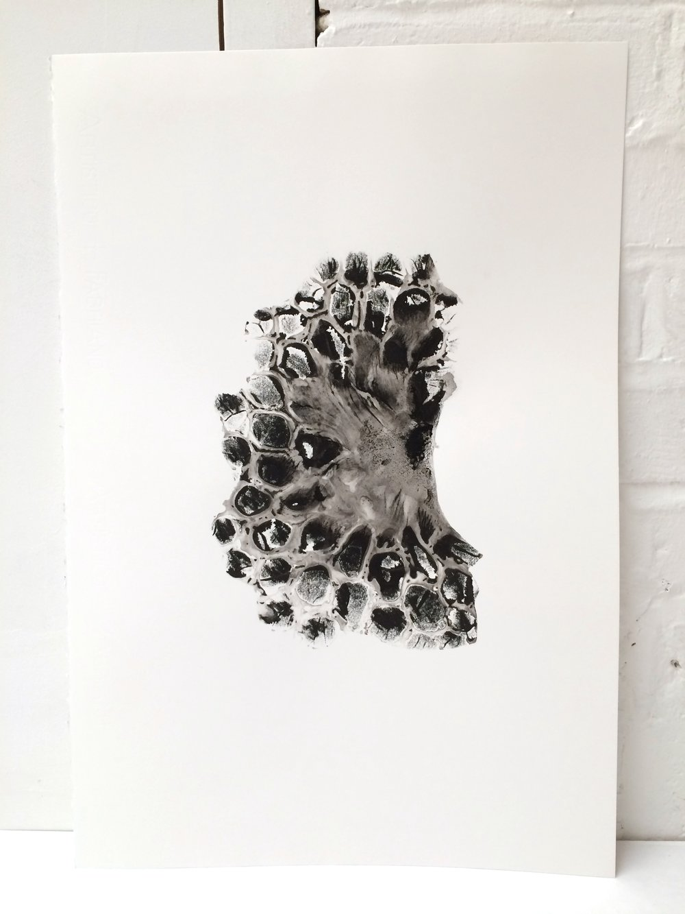 Lucia Pizzani, Spores Series. Monotypes, Original work 1200 GBP, Edition on Paper 80 GBP (Edition of 30)