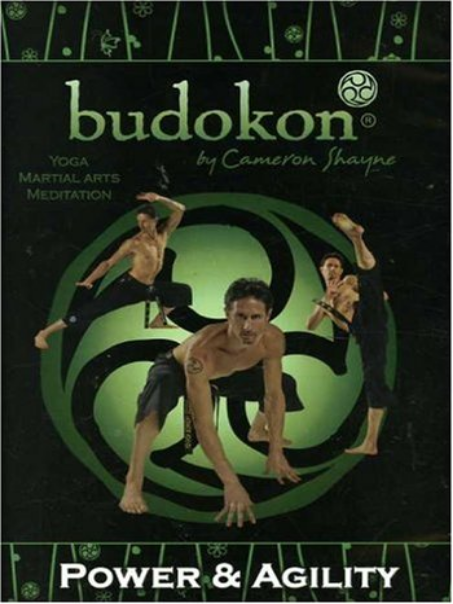 Budokon DVD - My first exposure to yoga