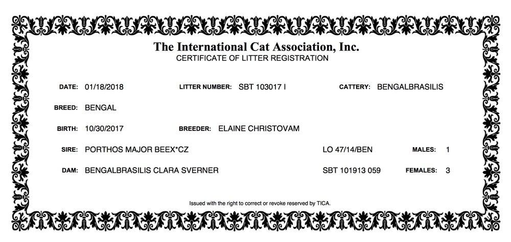 LITTER CERTIFICATION 10.30.17 Clara S.jpeg