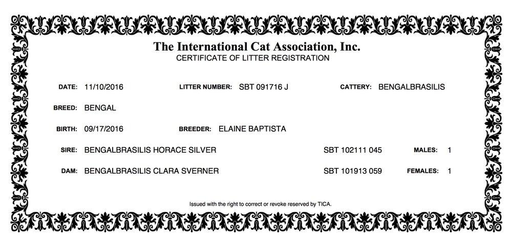 LITTER CERTIFICATE 09.17.16 Clara .jpeg