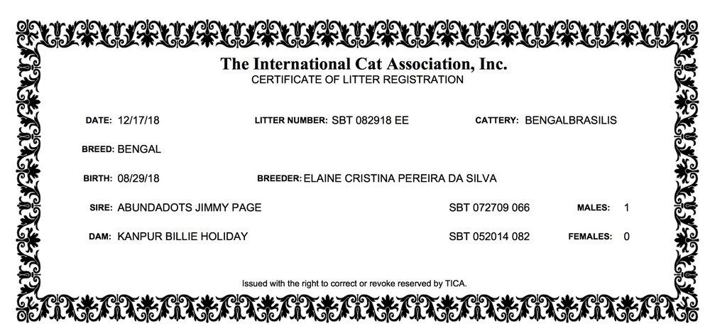 Bibi - Litter Registration (29.08.2018).jpeg
